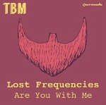 Are You With Me by Lost Frequencies