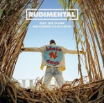These Days (Feat Jess Glynne Macklemore And Dan Caplen) by Rudimental